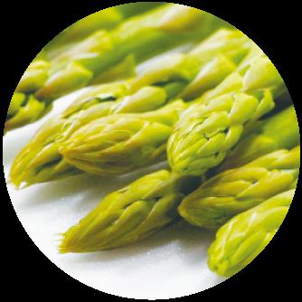 Asparagus stem extract